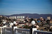 Олимпиада-2014 в Сочи. Фото Светланы Колосковой, Фото: 51