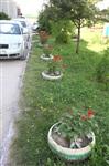 Сказочный двор в пос. Первомайский, Фото: 35