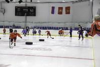 Легенды хоккея провели мастер-класс в Туле, Фото: 27