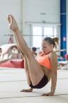 Тренировка гимнасток, Фото: 15