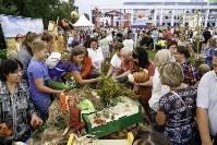 Праздник урожая в Новомосковске, Фото: 65