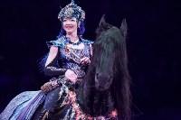 Туляков приглашают на новогоднее представление «Ёлка в цирке», Фото: 33