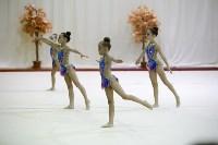 """Соревнования по художественной гимнастике """"Осенний вальс"""", Фото: 67"""