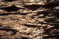 """Море"" на Красноармейском проспекте, Фото: 78"