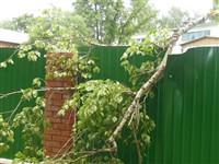 Ураган в Плавске, Фото: 7
