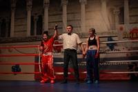 В Туле прошла матчевая встреча звезд кикбоксинга, Фото: 75