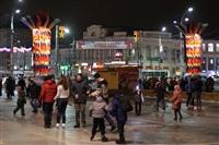 Ёлка на площади Ленина. 25 декабря 2013, Фото: 22