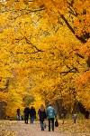 Золотая осень в Туле-2019, Фото: 92