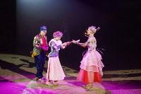 Тульским пенсионеркам на 8 Марта подарили поход в цирк, Фото: 17