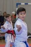 Соревнования по восточному боевому единоборству, Фото: 49