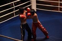 В Туле прошла матчевая встреча звезд кикбоксинга, Фото: 56