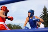 Матчевая встреча по боксу между спортсменами Тулы и Керчи. 13 сентября 2014, Фото: 6