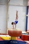 Спортивная гимнастика в Туле 3.12, Фото: 4