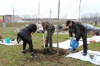 Надежда Школкина и Дмитрий Миляев высадили клены возле Ледового дворца, Фото: 9