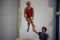 Спортивная гимнастика в Туле 3.12, Фото: 149