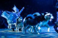 Шоу фонтанов «13 месяцев»: успей увидеть уникальную программу в Тульском цирке, Фото: 144