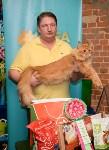 Выставка кошек в Искре, Фото: 70
