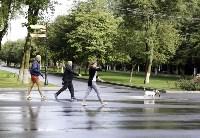 Рейд по выгулу собак в Центральном парке, Фото: 2