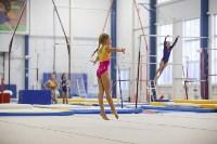 Спортивная гимнастика в Туле 3.12, Фото: 105