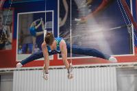 Тульский гимнаст Иван Шестаков, Фото: 11