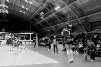 Кубок губернатора по волейболу: финальная игра, Фото: 68
