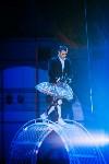 Шоу Lovero в тульском цирке, Фото: 18