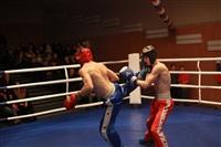 В Туле прошла матчевая встреча звезд кикбоксинга, Фото: 83