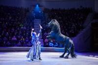 Туляков приглашают на новогоднее представление «Ёлка в цирке», Фото: 87