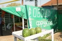Рейд по незаконной продаже арбузов, Фото: 16