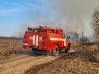 В Федоровке огонь с горящего поля едва не перекинулся на дома, Фото: 1