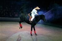 Цирк «Вива, Зорро!» в Туле , Фото: 74
