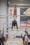 Первенство ЦФО по спортивной гимнастике, Фото: 118