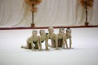 """Соревнования по художественной гимнастике """"Осенний вальс"""", Фото: 131"""