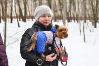 В Комсомольском парке прошёл рейд по выявлению собачников-нарушителей, Фото: 24