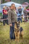 Международная выставка собак, Барсучок. 5.09.2015, Фото: 49