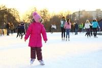 Где тулякам покататься на коньках , Фото: 44