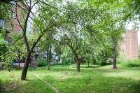 Яблоневый сад и роща на ул. Серова, Фото: 5