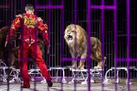 Шоу фонтанов «13 месяцев»: успей увидеть уникальную программу в Тульском цирке, Фото: 217