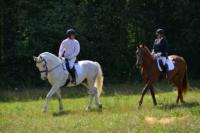 В Ясной поляне стартовал турнир по конному спорту, Фото: 69