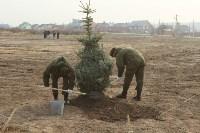 Возле мемориала «Защитникам неба Отечества» высадили еловую аллею , Фото: 23