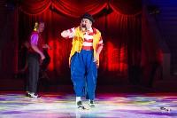 Тульский цирк, Фото: 55