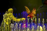 Шоу фонтанов «13 месяцев» в Тульском цирке – подарите себе и близким путевку в сказку!, Фото: 33