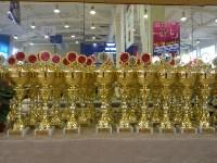 Туляки на соревнованиях по спортивной гимнастике в Брянске., Фото: 10