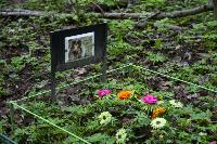 Кладбище домашних животных в Туле, Фото: 48