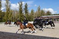Кубок губернатора Тульской области по конкуру 2019, Фото: 132