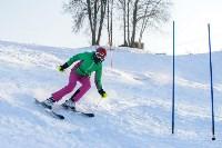 Первый этап чемпионата и первенства Тульской области по горнолыжному спорту, Фото: 33