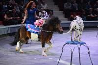 Цирковое шоу, Фото: 63