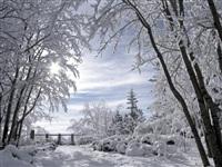 Русская зима, Фото: 6