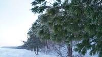 Мотороллер «Алексей Геннадьевич» из Тулы установил рекорд скорости на «Байкальской миле», Фото: 33