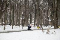Рогожинский парк, зима 2019, Фото: 14